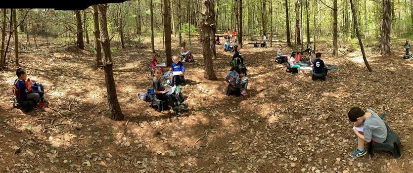Reading and writing in nature.